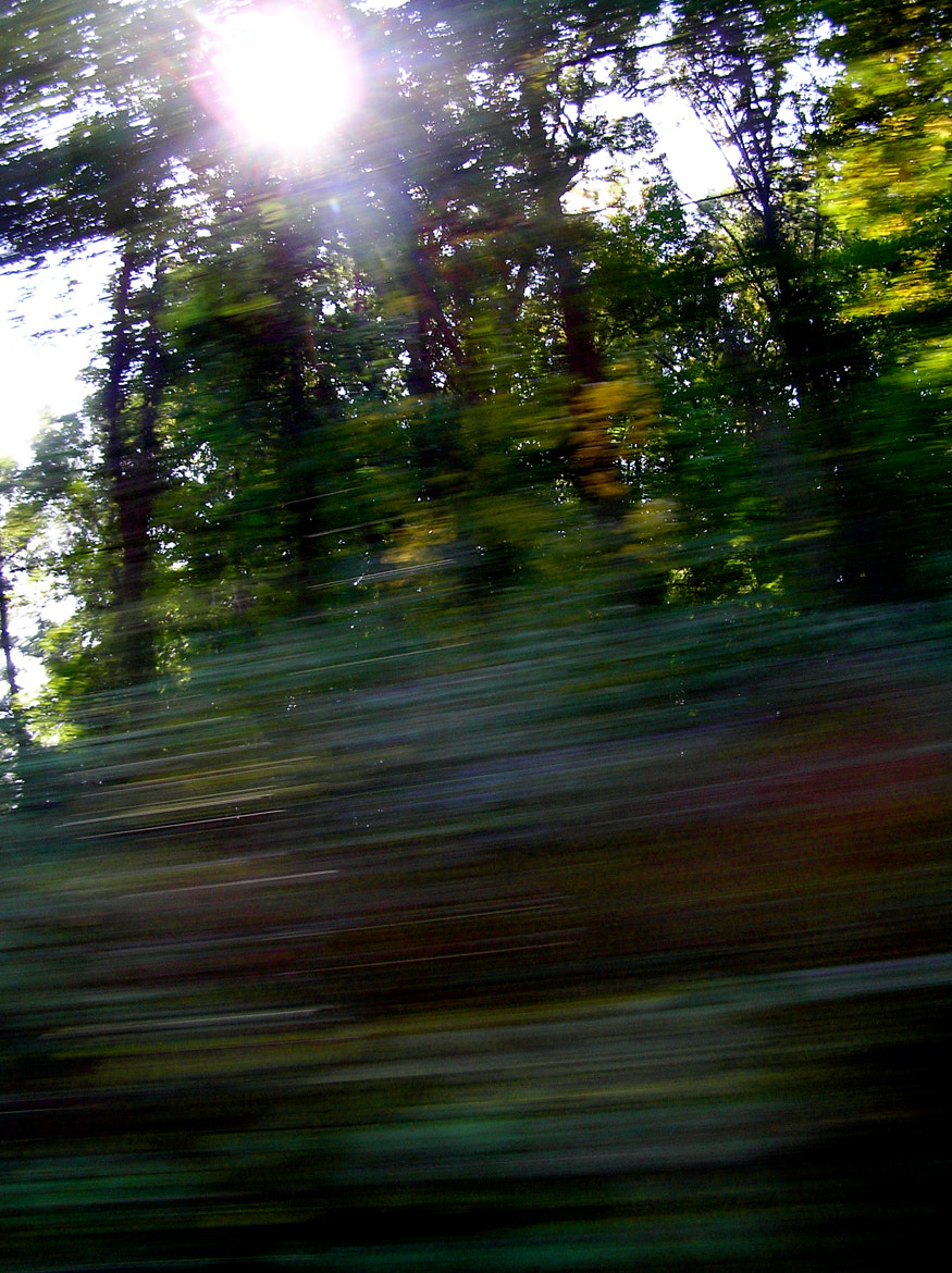 Photograph Summer Drive by Nicole Alexandra on 500px