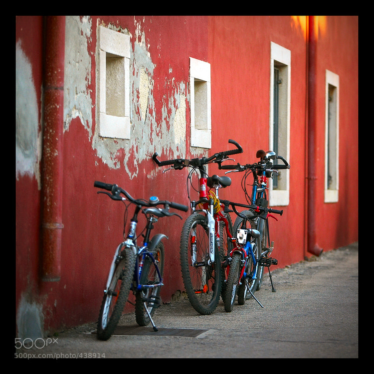 Photograph Bicycle family by Vladimir Forsov on 500px