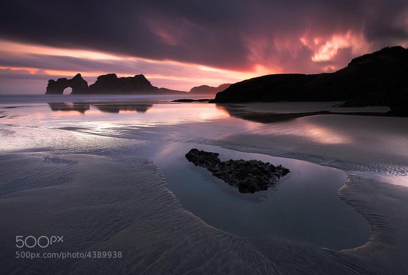 Photograph Fires of Wharariki by Adam Burton on 500px