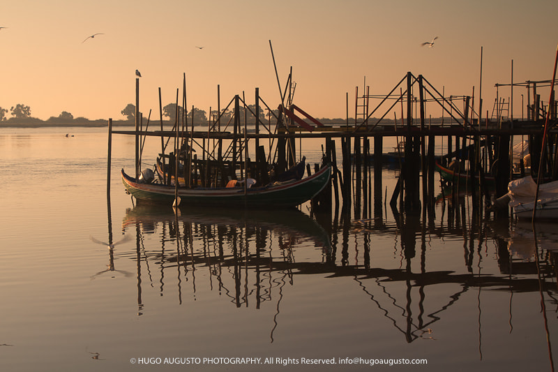 Photograph It's good to be home... by Hugo Augusto on 500px