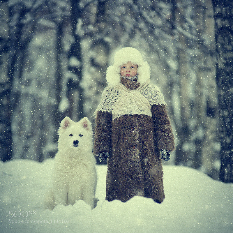 Photograph Snowy by Vladimir Zotov on 500px
