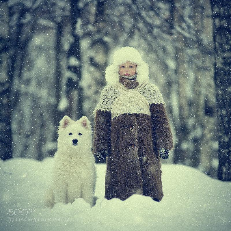 Photograph Snowy by Vladimir Zotov on 500px