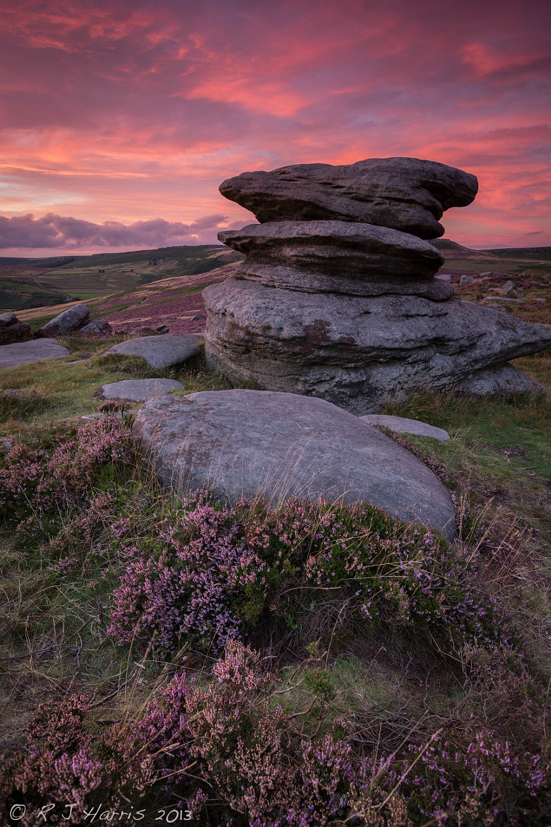 Photograph Pink Hue by Rob Harris on 500px