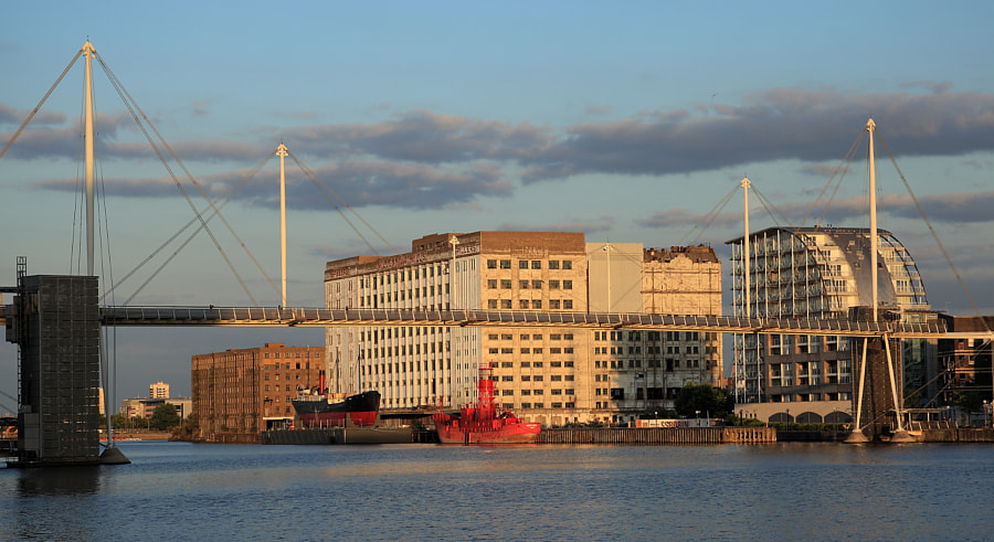 Golden Light, Royal Victoria Dock