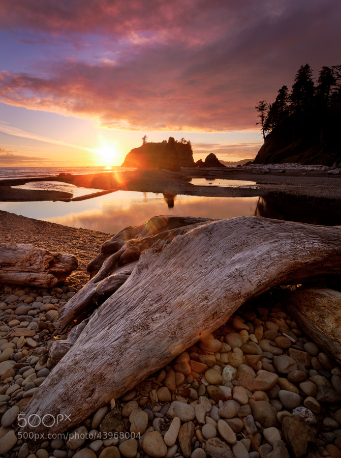 Photograph Ruby Beach Sunset #2 by Stevan Tontich on 500px