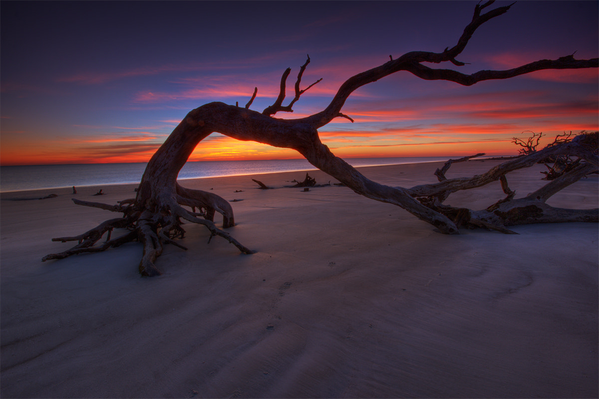 Photograph Jekyll Island Dawn by Jerry Patterson on 500px