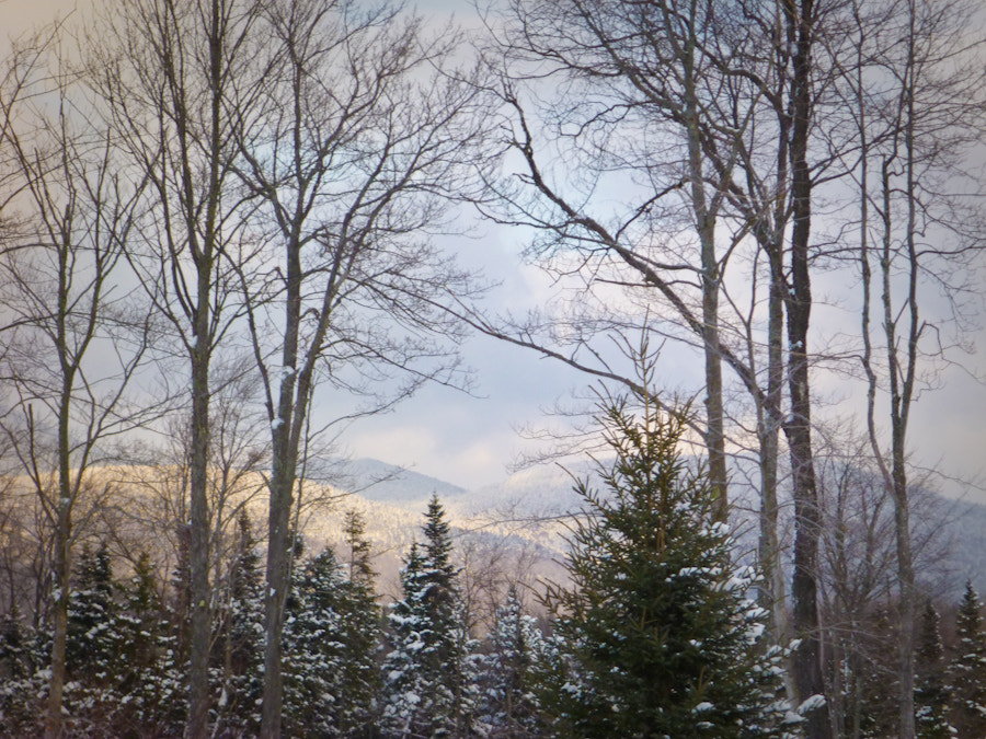 Photograph Adirondack winter by John Linn on 500px