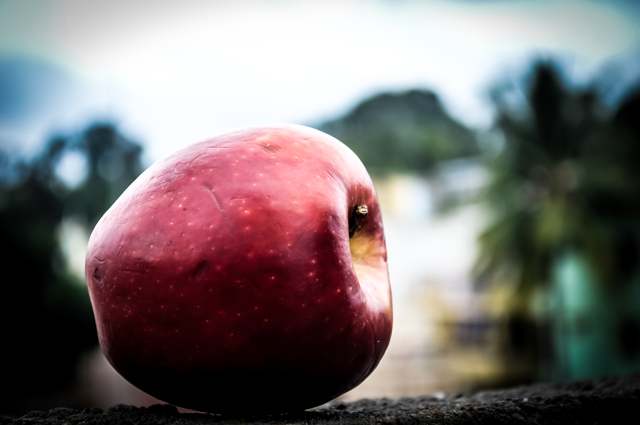 Photograph apple  by sajan Laks on 500px