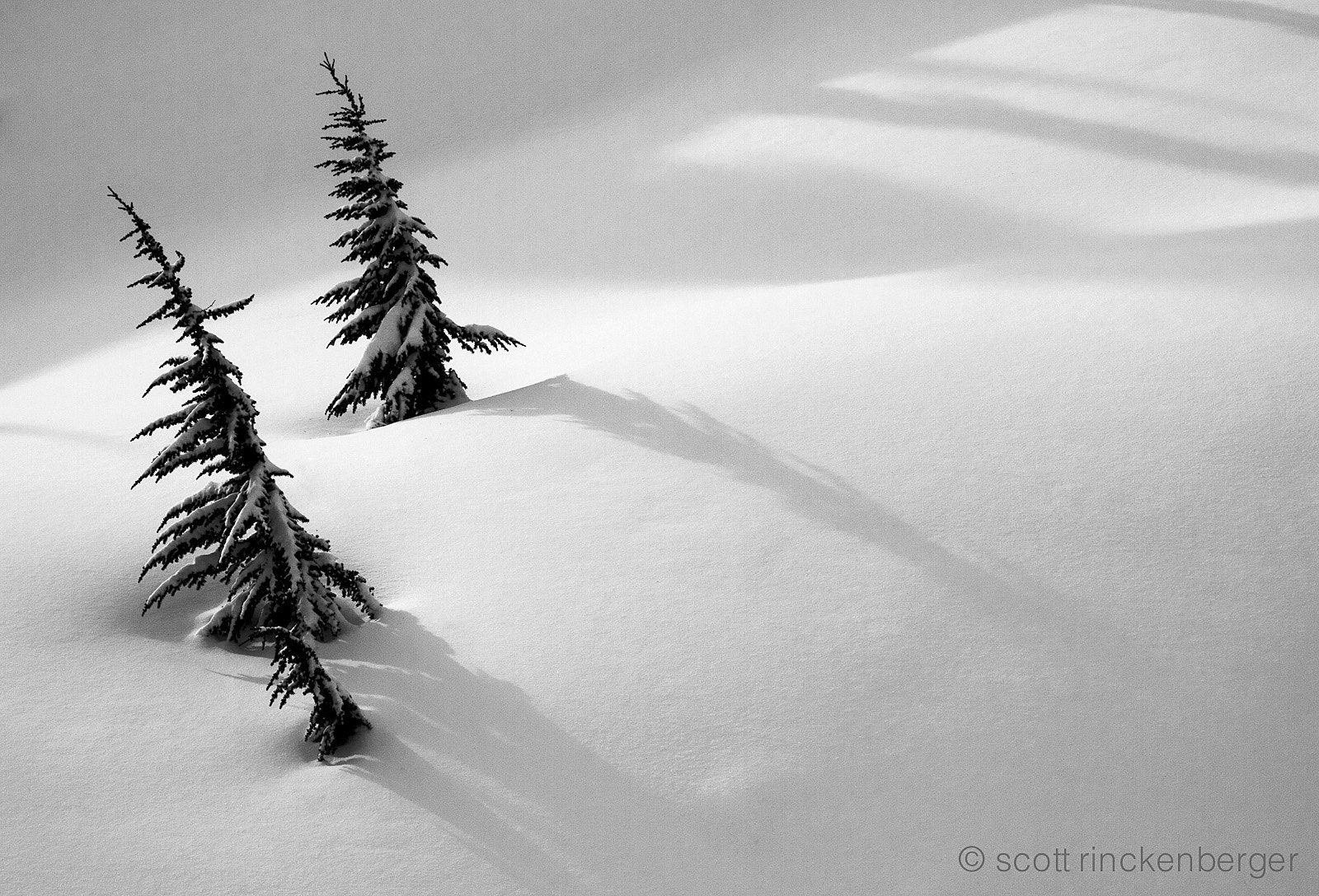 Photograph Soft Shadows by Scott  Rinckenberger on 500px