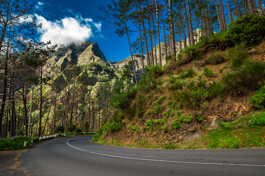 Photograph Madeira Mountain Road by Magnus Larsson on 500px