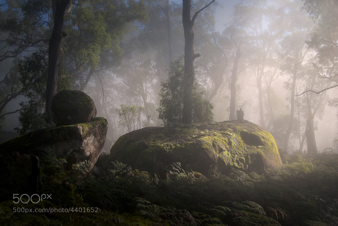 Photograph Sleeping giants by Nathan Kaso on 500px