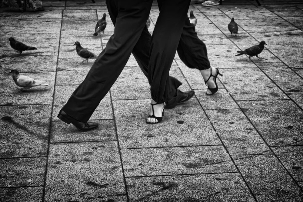 Photograph Birds Dancing by Francisco Amaral on 500px