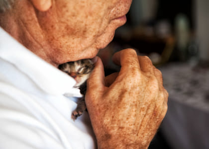 """""""What greater gift than the love of a cat.""""  ? Charles Dickens by Klassy Goldberg on 500px"""