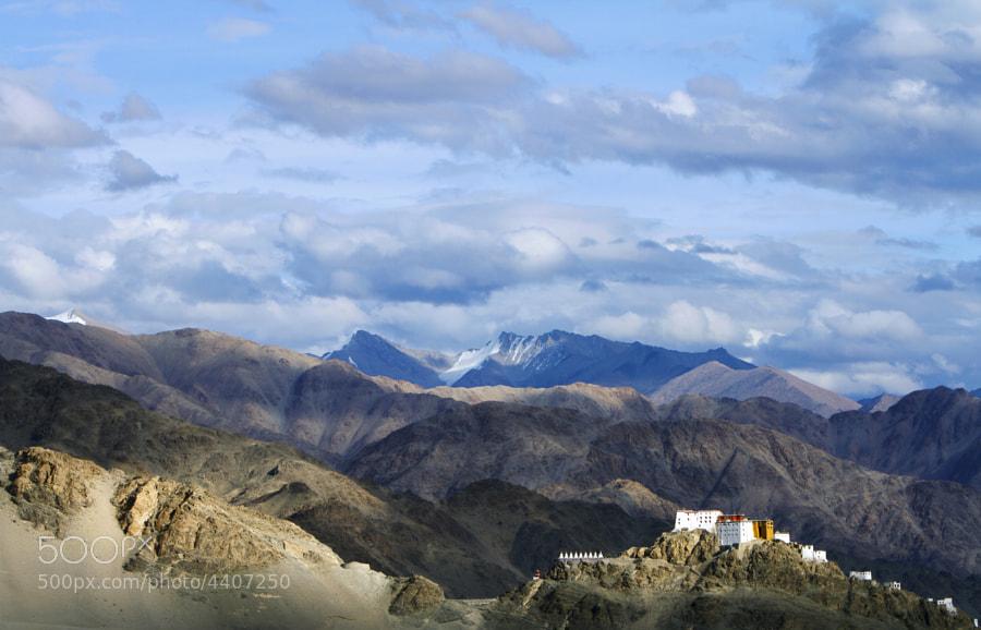 The Thiksey monastery dwarfed by the Himalayas.  Near Leh, Ladakh, India
