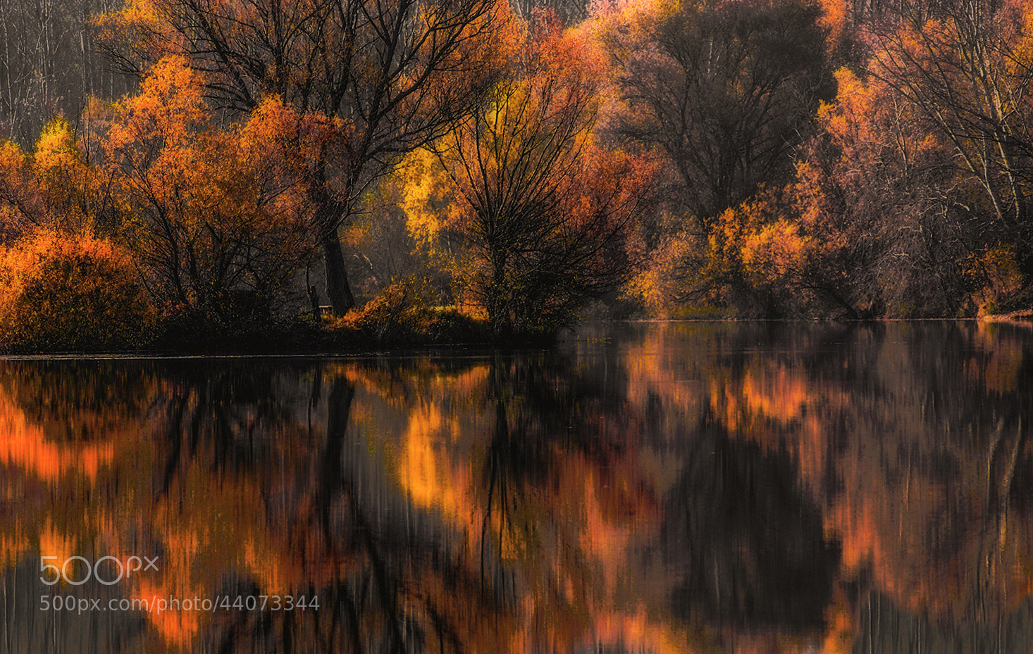 Photograph autumn by Andy 58 on 500px