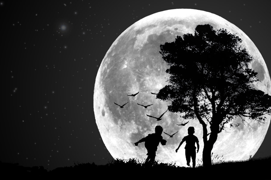 Photograph Moonlight by pink sword on 500px