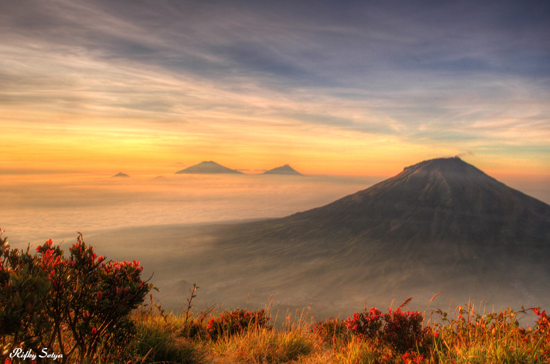 Photograph Brotherhood of Volcanoes by Rifky Setya on 500px
