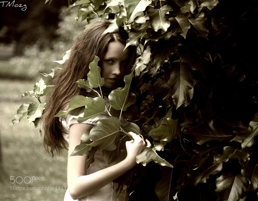 Photograph Gray by Tatyana Shagina on 500px