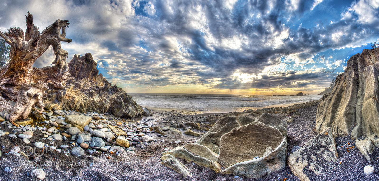 Photograph Wild Beach by Alex Gubski on 500px