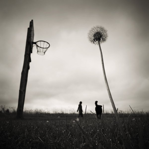 Photograph of basketball and other demons by Mindaugas Gabrenas on 500px