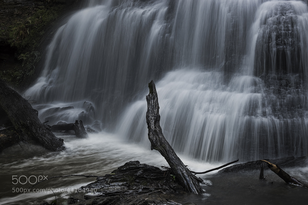 Photograph Henderson Falls by Dave Cox on 500px