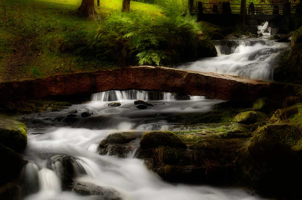 Photograph Park by Terje Nicolaysen on 500px