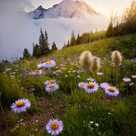 A Valley Between by Ryan  Dyar (RyanDyar)) on 500px.com