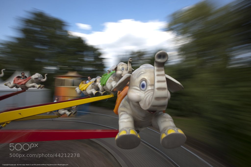 Photograph Flying Elephants by K J on 500px