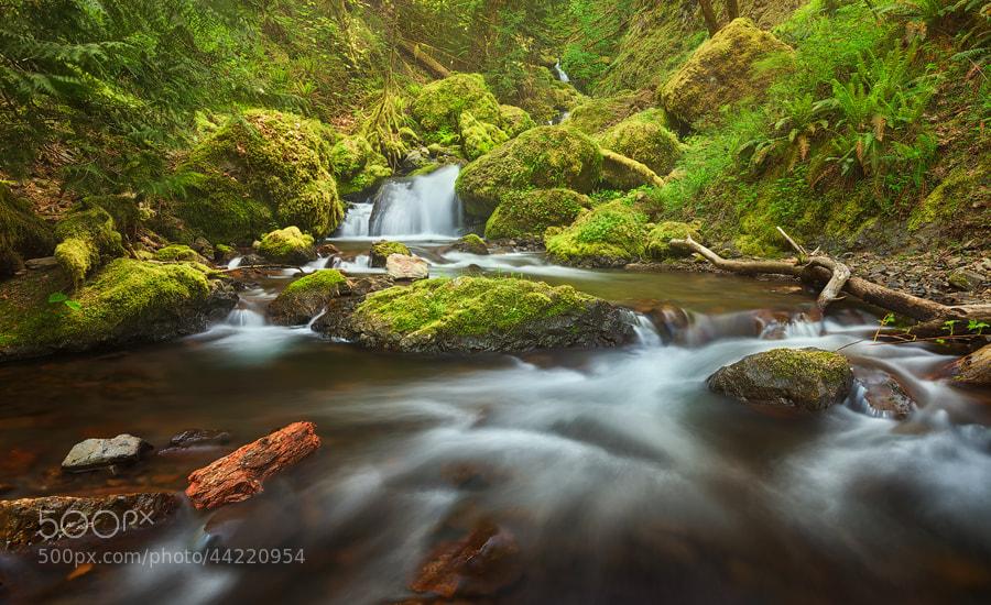 Photograph Gorton Creek by Michael  Breitung on 500px