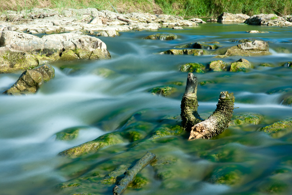 Photograph Mossy River by Joey Sengseng on 500px