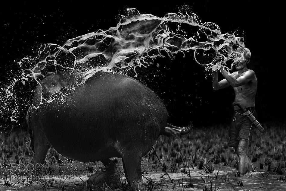 Photograph SPLASH !!!! by Ario Wibisono on 500px