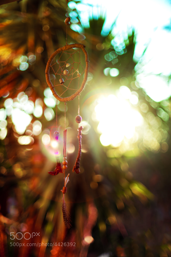 Photograph Dreamcatcher by Thomas David on 500px