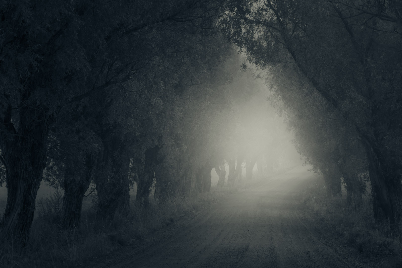 Photograph Path II by Mikko Lagerstedt on 500px