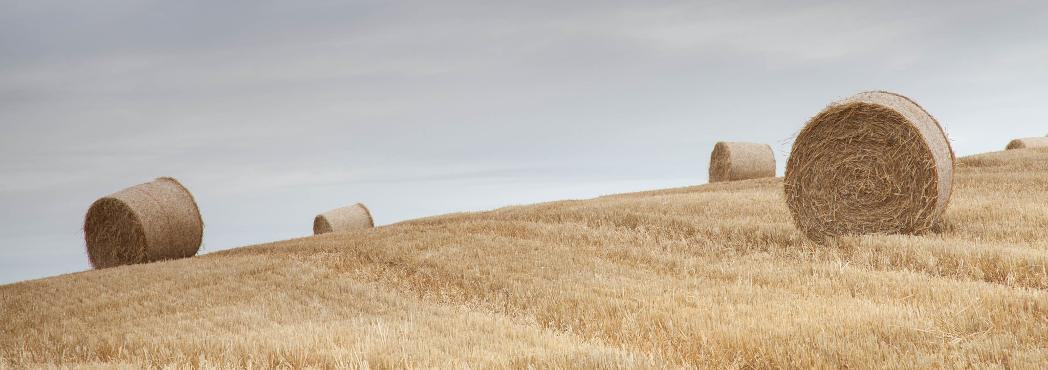 Photograph Bales Pano by Carl Mickleburgh on 500px