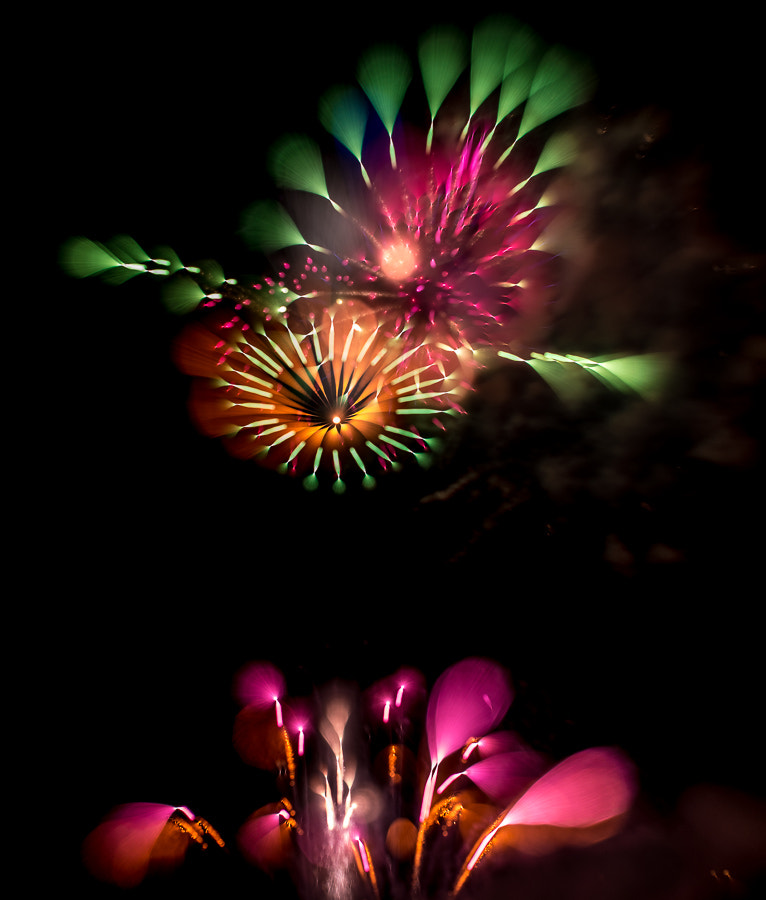 Photograph Fireworks #6 by Christer Lindh on 500px