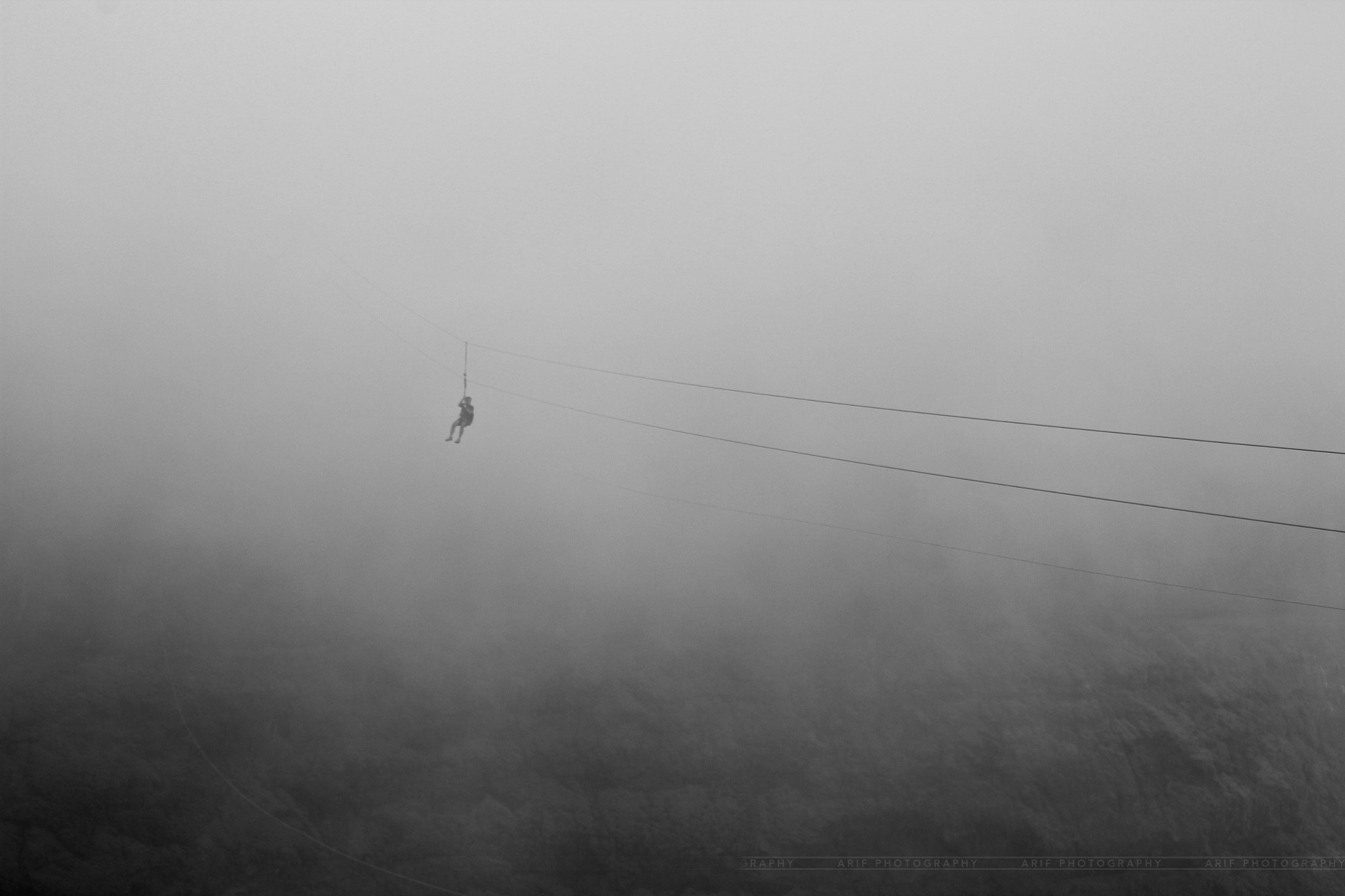 Photograph Out of the fog by Arif Mohammad on 500px