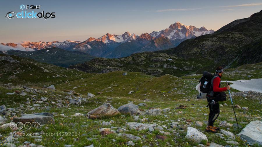 Photograph La sua vista ci cattura... (Valle della Thuile, Valle d'Aosta) by Francesco Sisti on 500px