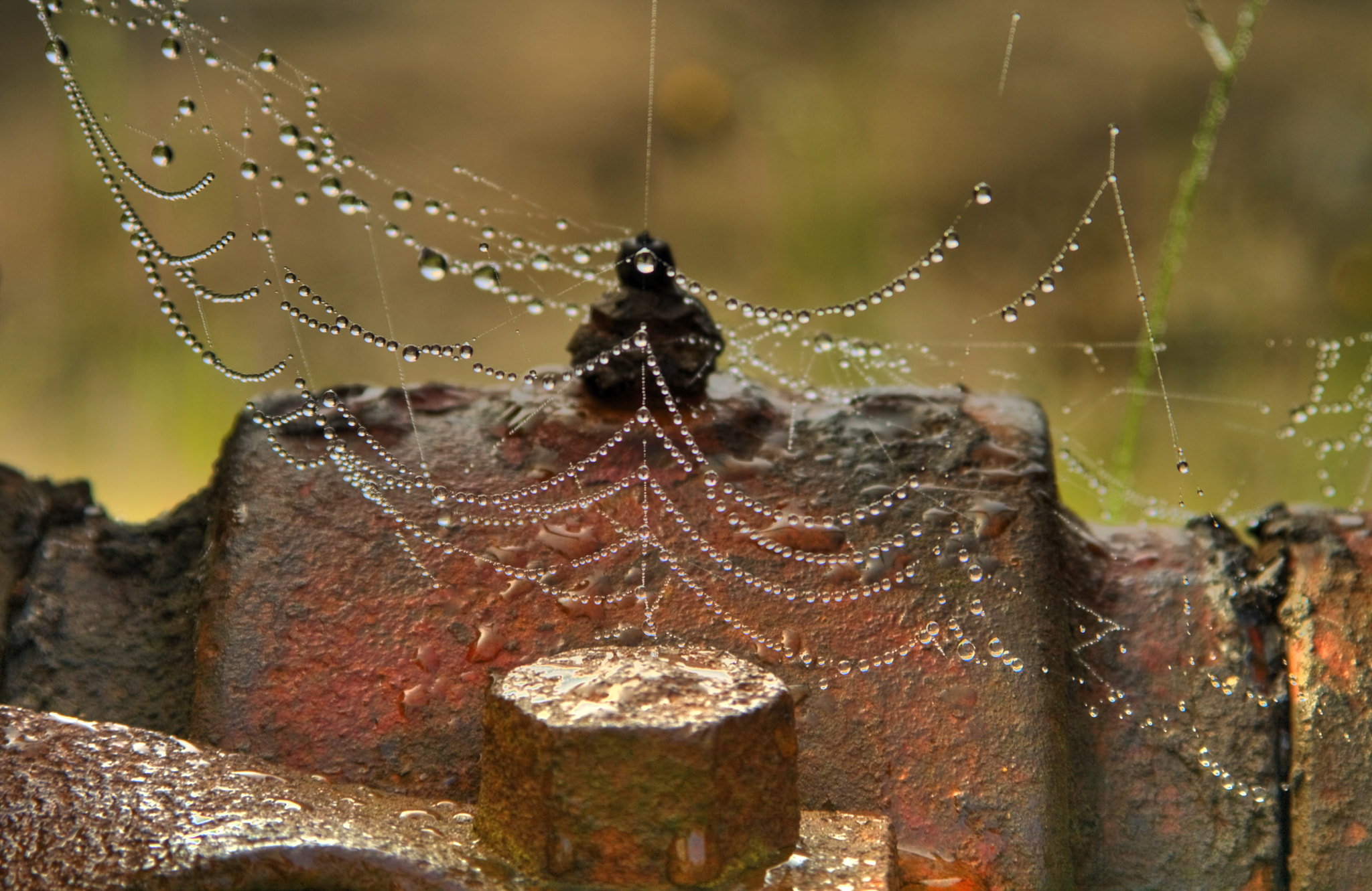 Photograph web by Darrick Moran on 500px
