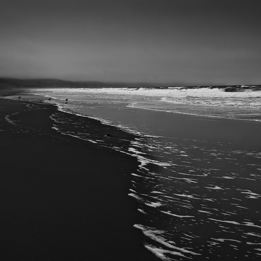 Photograph Point Reyes, California 2013 by Brian Day on 500px