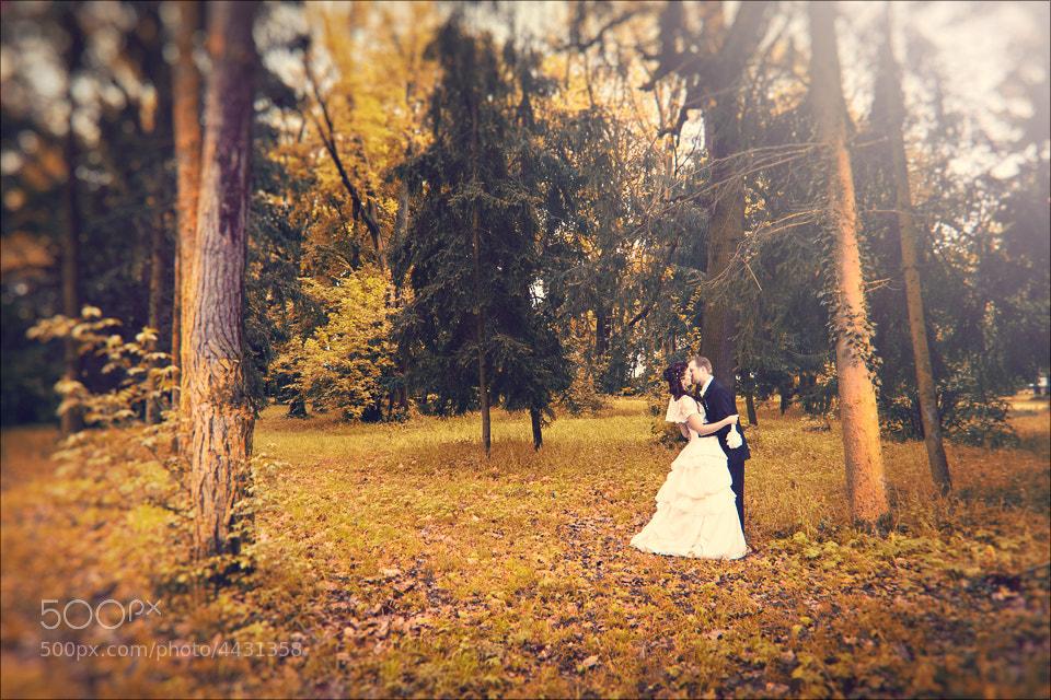Photograph Orange Wedding by Andrej Grznar on 500px