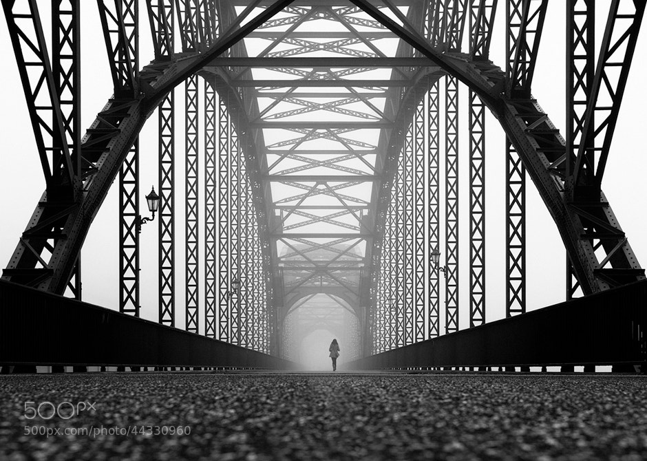 Photograph november fog by Kai Ziehl on 500px