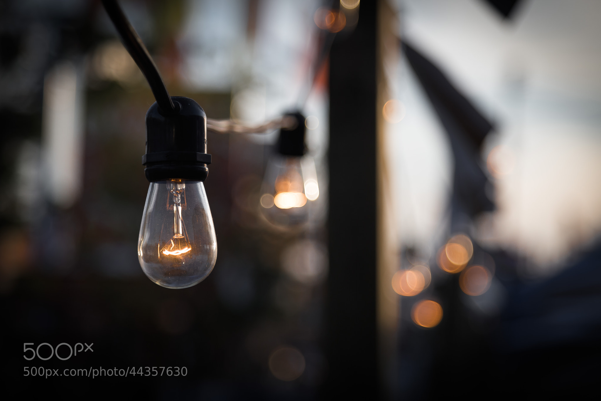 Photograph Lightbulbs by Eric Akaoka on 500px
