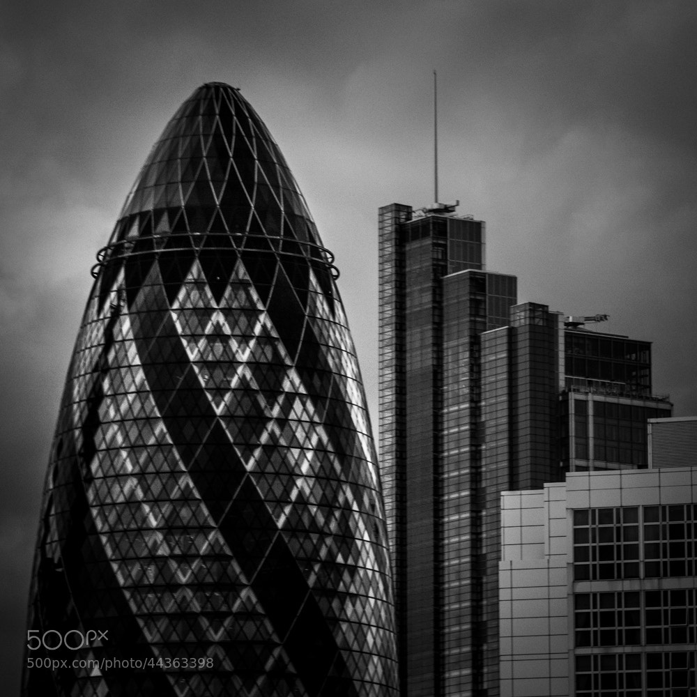 Photograph Gherkin by Dayne Reast on 500px
