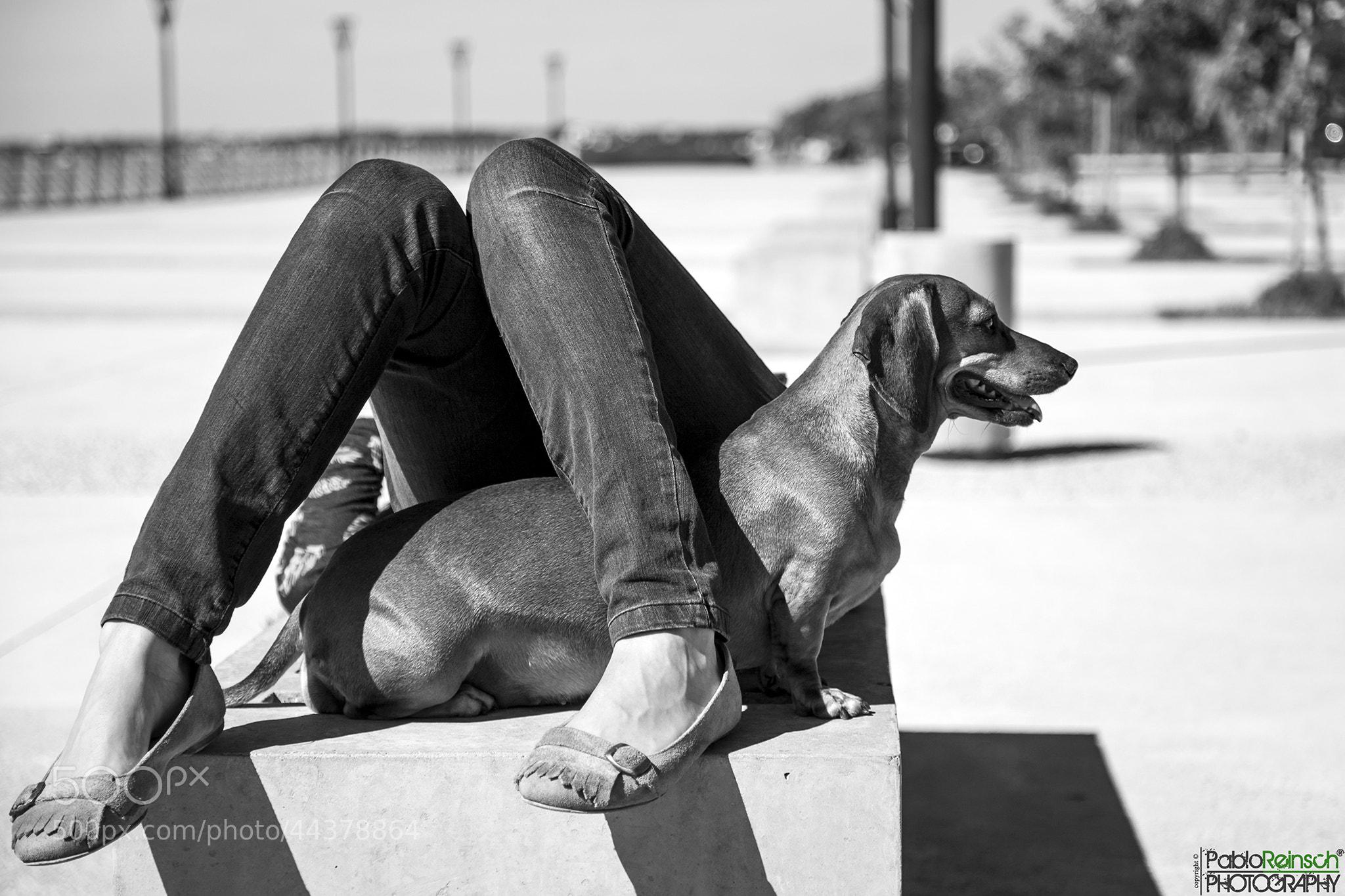 Photograph Cargando bateria.- by Pablo Reinsch on 500px