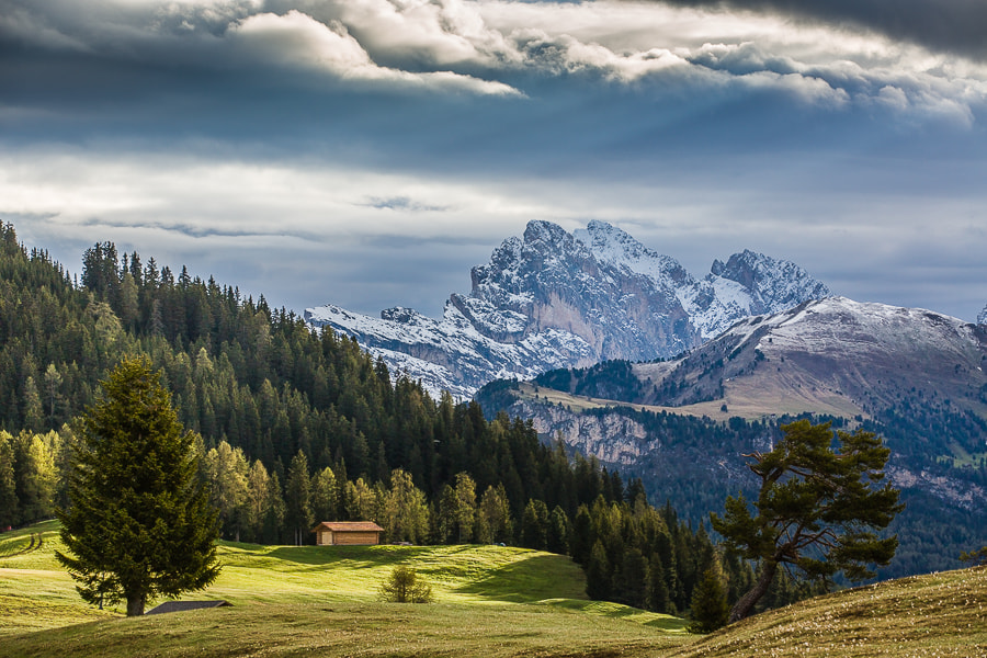 Photograph Alpe di Siusi in morning light by Hans Kruse on 500px