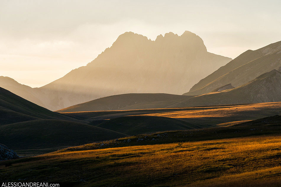 Photograph The horn by Alessio Andreani on 500px