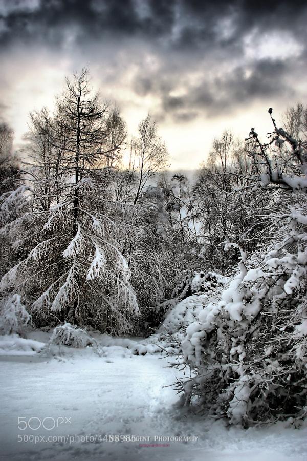 Snow Scene from Scottish Highlands