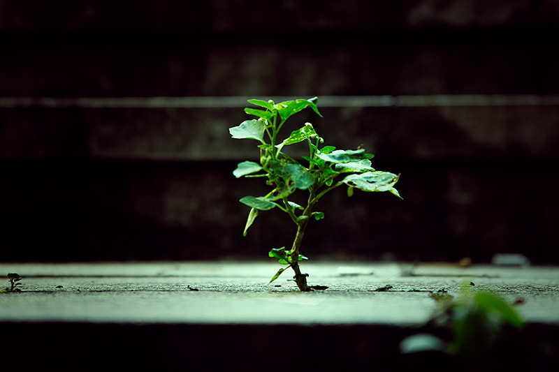 Photograph Untitled by yunho song on 500px