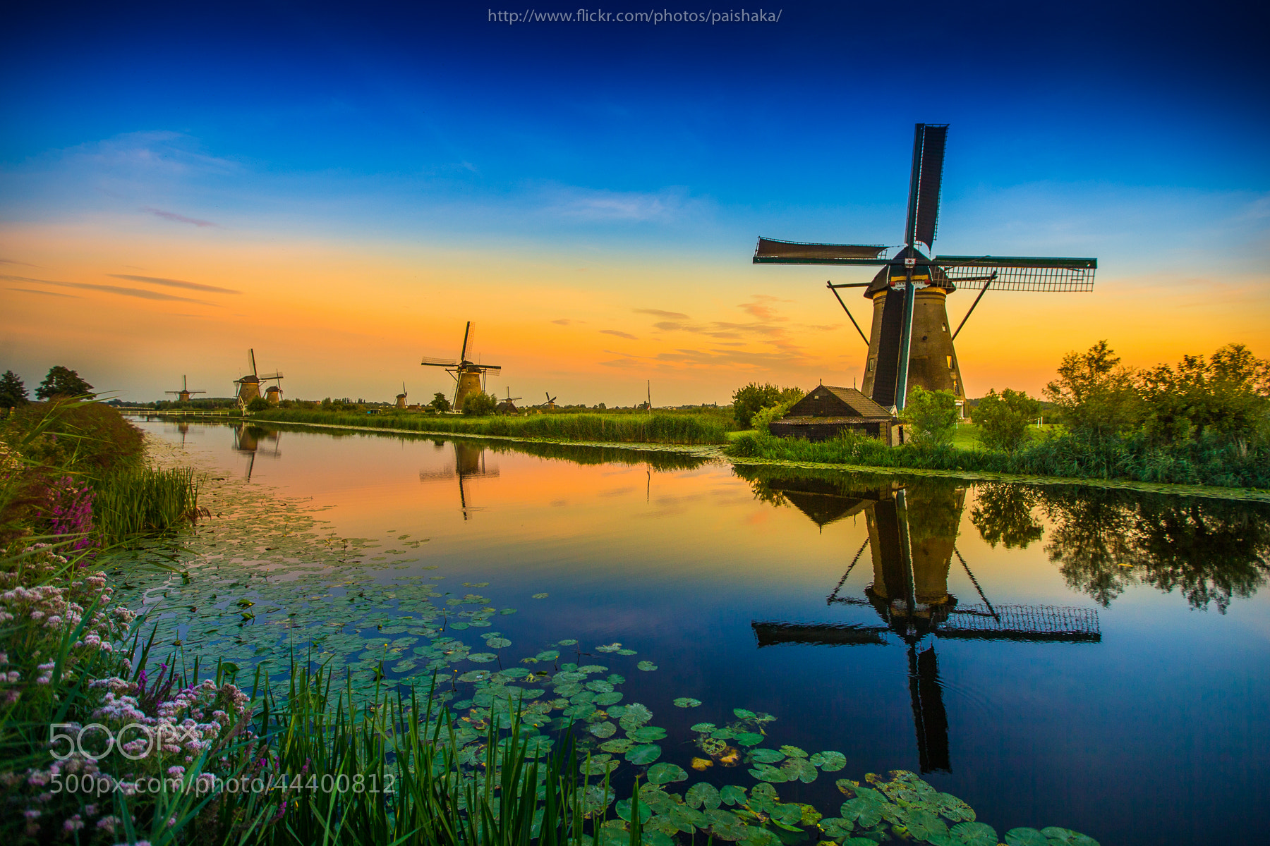 Photograph Dutch Mill by Pai Shaka on 500px