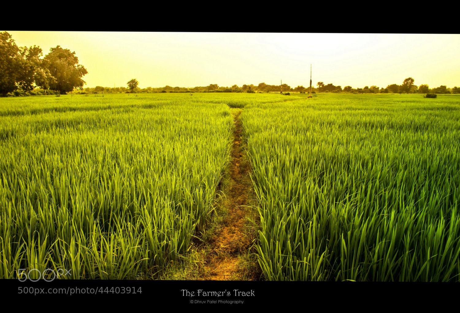 Photograph The Farmer's Track by Dhruv Patel on 500px